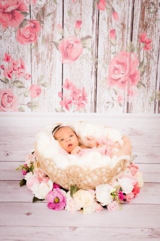 Timena Lealamisa (Newborn) 2019 43