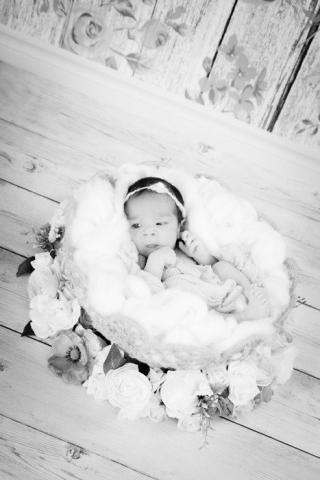 Timena Lealamisa (Newborn) 2019 44