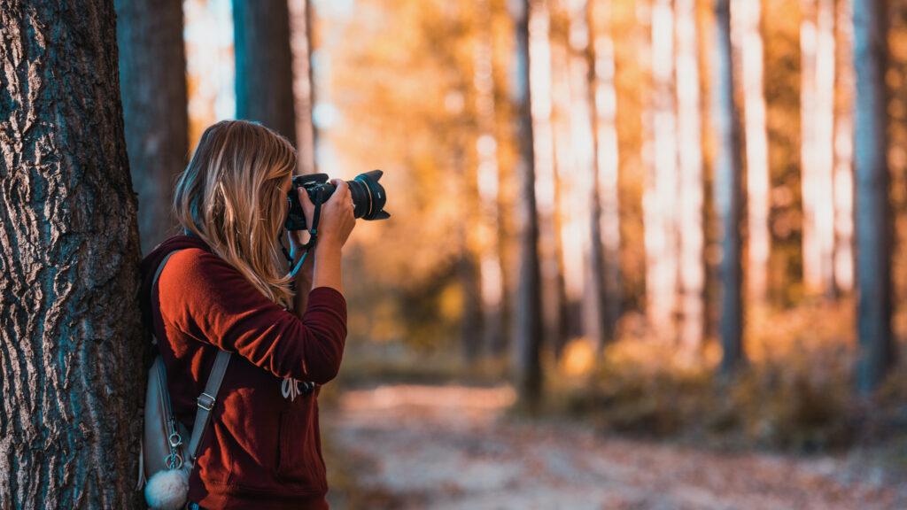 What's The Best Season To Take Photos? 5