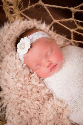 Annalise Beard (Newborn 2021) 33
